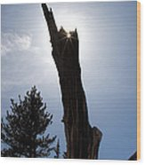 Rocky Mountain Obelisk Wood Print