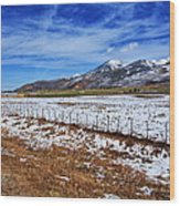 Rocky Mountain Ranch Wood Print