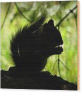 Rocky Mountain Squirrel Silhouette Wood Print