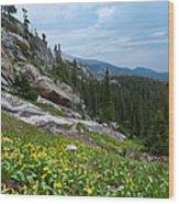 Rocky Mountain Summer Wood Print