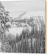 Rocky Mountain Vista Wood Print