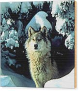 Rocky Mountain Wolf Wood Print