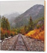 Rocky Mountaineer Wood Print
