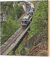 Rocky Mountaineer Railway Wood Print