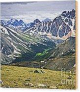 Rocky Mountains In Jasper National Park Wood Print by Elena Elisseeva