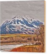 Rocky Mountains In Montana Wood Print