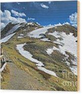 Rocky Mountains Path Wood Print
