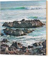 Rocky Ocean Shoreline One Wood Print