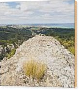 Rocky Outcrops Of Trotters Gorge Otago Nz Wood Print