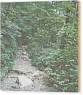 Rocky Path Wood Print