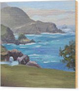Rocky Point Big Sur Wood Print by Karin  Leonard