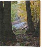 Rocky River Autumn 4 Wood Print