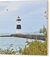 Rocky River Pier Wood Print