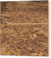 Rocky Road To The River In Savannah Wood Print