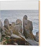 Rocky Seascape Wood Print