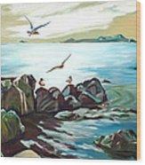 Rocky Seashore And Seagulls Wood Print