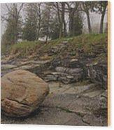 Rocky Shore 6 Wood Print