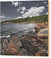 Rocky Shore Of Georgian Bay I Wood Print by Elena Elisseeva