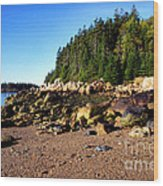 Rocky Shoreline Deer Isle Maine Wood Print