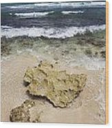 Rocky Shoreline In Tulum Wood Print