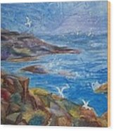 Rocky Shores Of Maine Wood Print