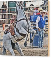 Rodeo Horse Cheers Wood Print