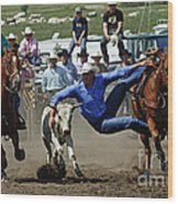 Rodeo Steer Wrestling Wood Print