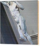 Rodin's The Vanguished -- 2 Wood Print