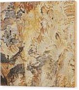 rodks 'III Wood Print
