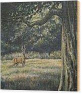 Spirit Of The Moment - Roe Buck Wood Print