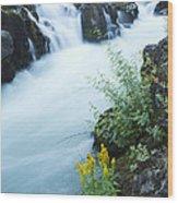 Rogue River Falls 5 Wood Print