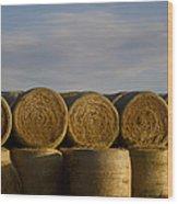 Rolled Hay   #1056 Wood Print