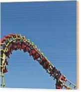 Roller Coaster Ride Wood Print