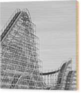 Roller Coaster Wildwood Wood Print