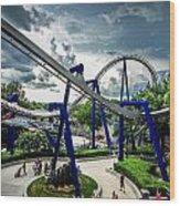 Rollercoaster Amusement Park Ride Wood Print