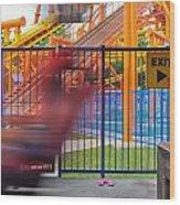 Rollercoasters At Amusement Park Wood Print