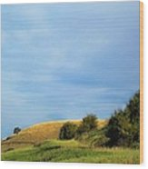 Rolling Hills Montana Wood Print