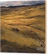 Rolling Hills Wood Print by Robert Bales