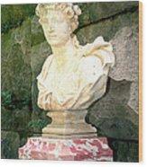 Roman Biltmore Asheville Nc Wood Print