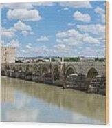 Roman Bridge Of Cordoba Wood Print