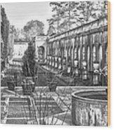 Roman Gardens In The Fall - Bw Wood Print