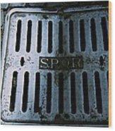 Roman Manhole Cover Wood Print