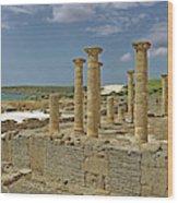 Roman Ruins Of Baelo Claudia Wood Print
