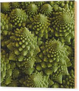 Romanesco Broccoli Close Up Wood Print