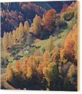 Romania, Transylvania, Carpathian Wood Print