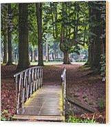 Romantic Bridge To Shadow Place. De Haar Castle Wood Print by Jenny Rainbow