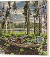 Romantic Meadow Wood Print