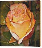 Romantic Rose Wood Print