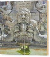Rome 2 Wood Print