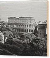 Rome 2010 Wood Print